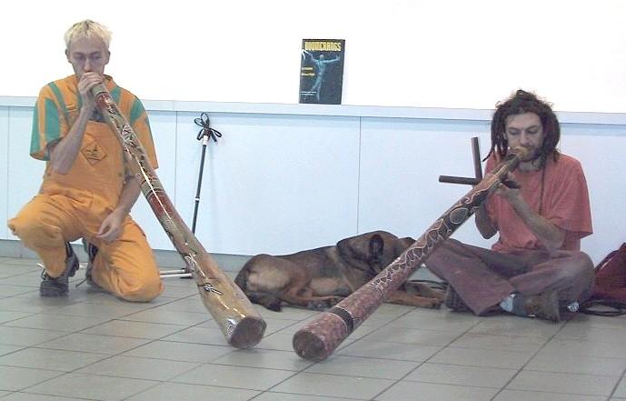 didgeridoos australiens